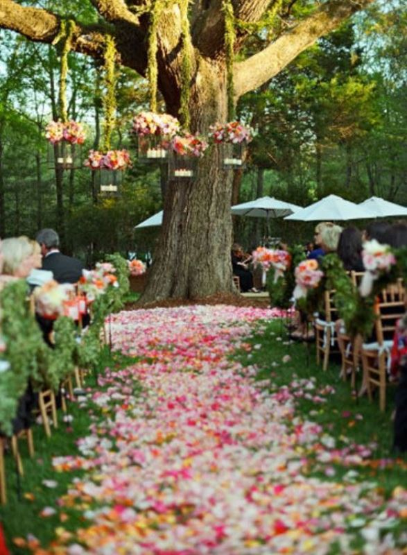 Picture of amazing backyard wedding ceremony decor ideas 11 for Backyard wedding ceremony decoration ideas