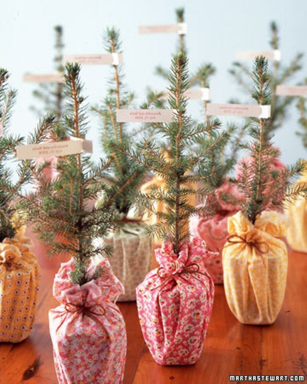 mini Christmas trees in bright fabric can be given to grow the love, this is a cool idea for a holiday wedding