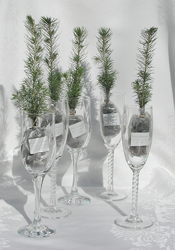 Amazing Christmas Wedding Favors To Get Inspired