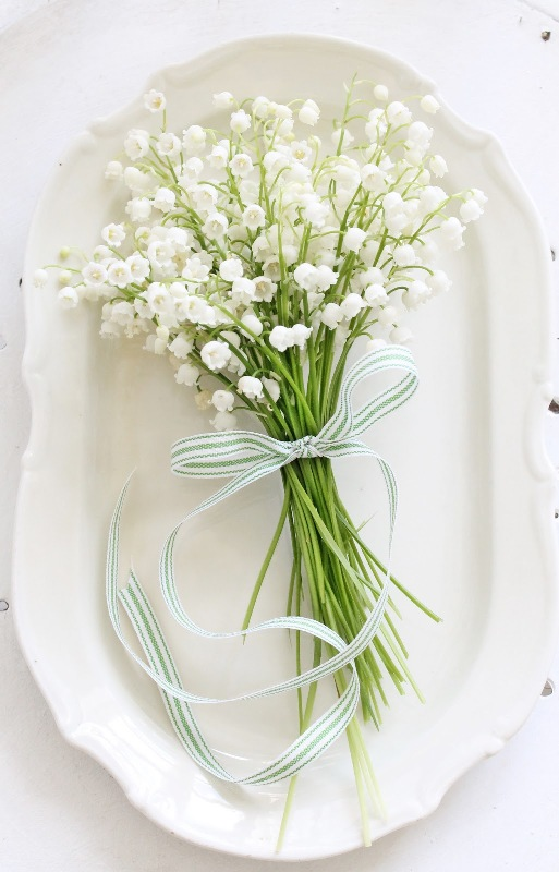 Wedding Bouquets Single Flower : Beauteous one flower bridal bouquets weddingomania