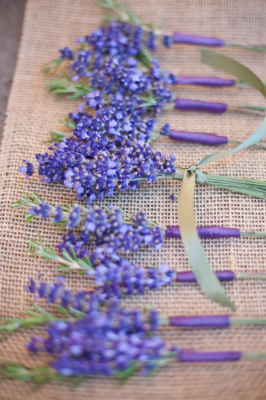 bright lavender boutonnieres are cool to accent groom's and groomsmen's attire