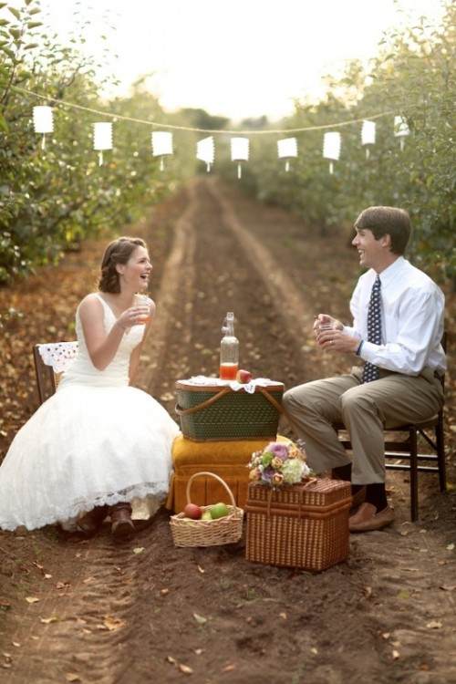 a garden wedding picnic with a paper lamp garland, chairs, basket boxes and some apples and apple cider