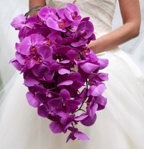 a real radiant orchid cascading wedding bouquet will spruce up your look with color and make it ultimate