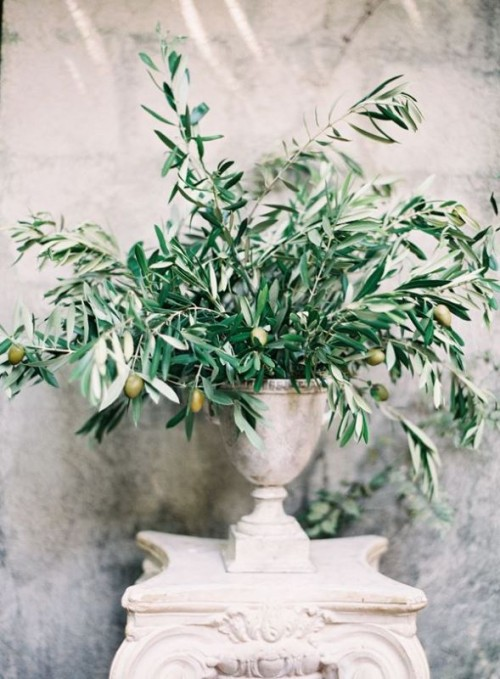 a wedding centerpiece or decoration of a large stone urn and olive branches with olives is pure elegance