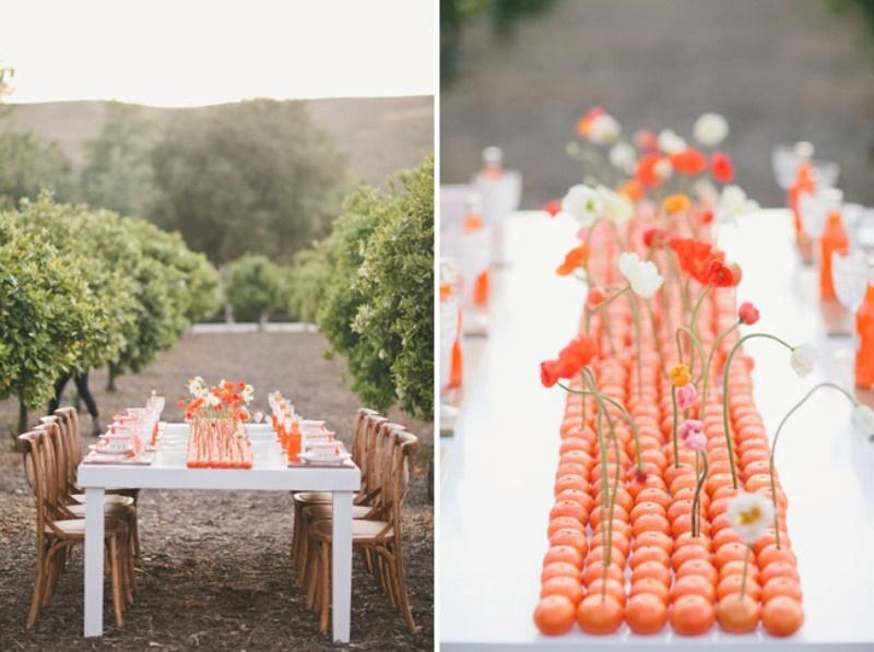 Picture of cheery orange wedding ideas junglespirit Choice Image