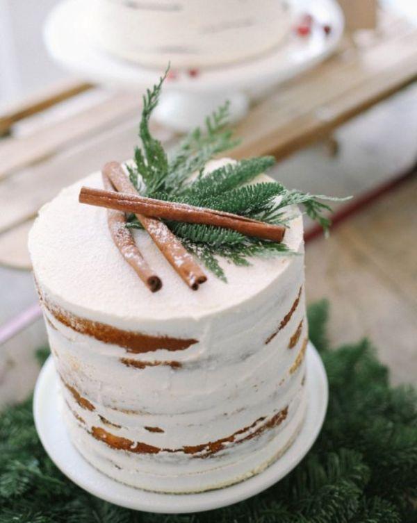 a semi naked one tier wedding cake with some fir and cinnamon bark on top for a Christmas wedding