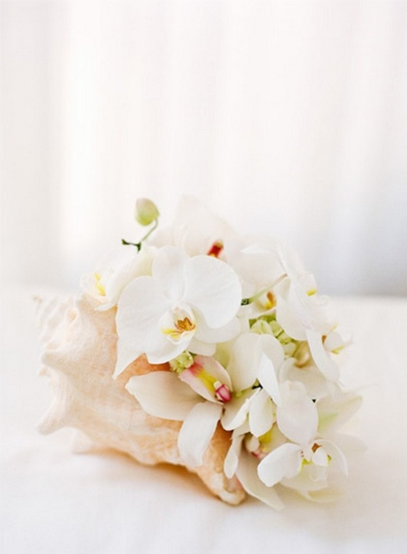 a large seashell with white orchids is a very creative tropical beach wedding centerpiece