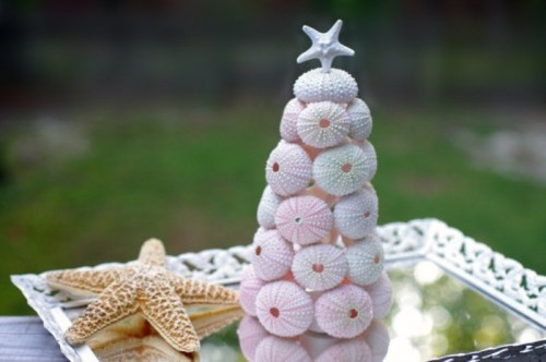 a sea urchin Christmas tree with a star on top plus a starfish for a Christmas beach wedding