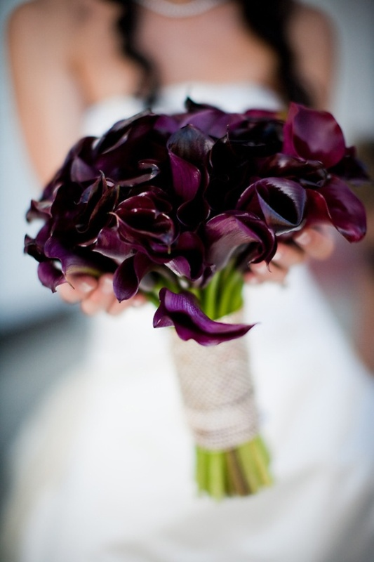 a deep purple calla wedding bouquet with a neutral wrap is timeless classics for a bride