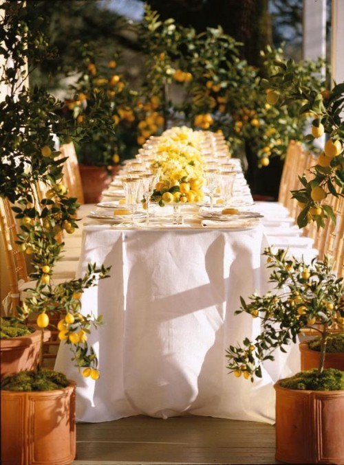 a lemon spring wedding reception with trees around it, with white linens and lemon centerpieces is a chic space
