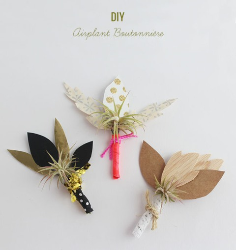 Original DIY Airplant Boutonniere For Grooms And Groomsmen