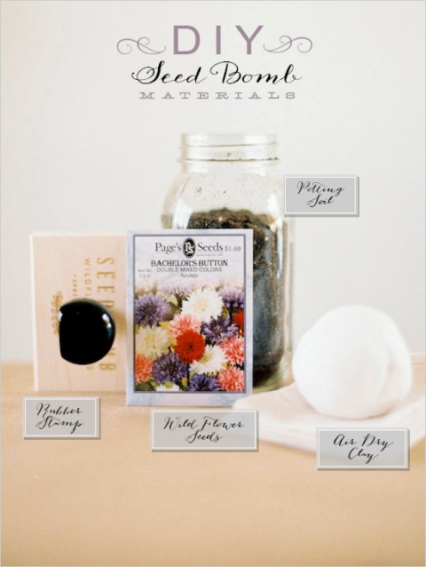 Unique DIY Seed Bomb Wedding Favors