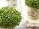 round boxes with fresh greenery are a fresh and natural idea for a spring or summer wedding