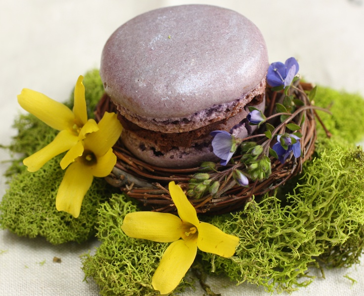 macarons placed into little fake nests and decorated with blooms and moss