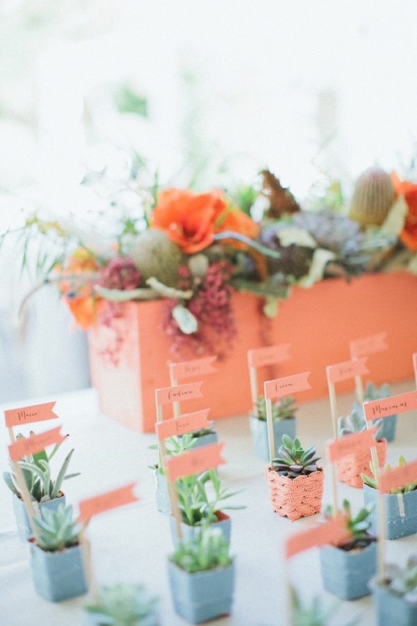 mini succulents in colorful pots with bright markers are nice for a spring or summer wedding