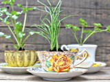 fresh herbs in elegant and stylish teacups are a timeless idea to go for