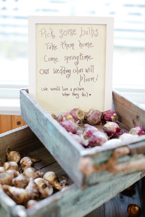 offer your guests bulbs to plant them after the wedding and enjoy the blooms