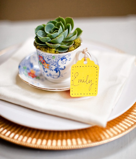 mini succulents planted into elegant teacups and with tags are a cute wedding favor idea all year round