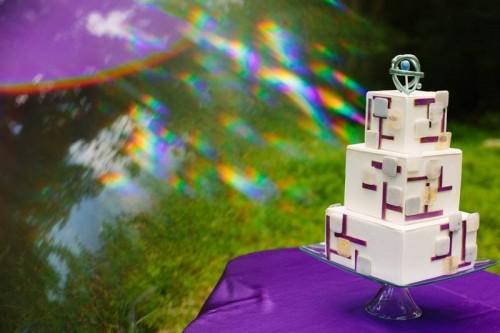 "Amazing ""The Big Bang Theory"" Themed Wedding"