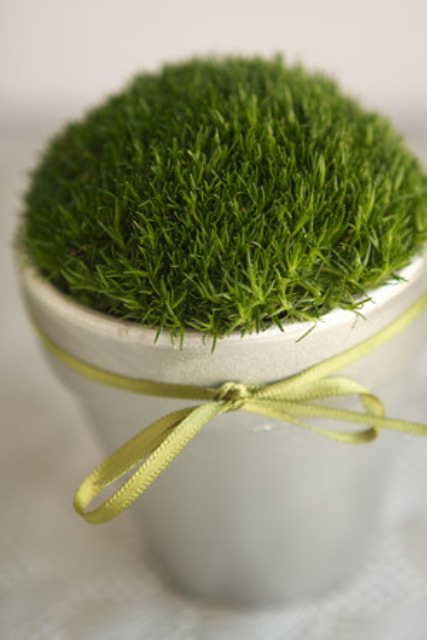 moss wedding favors (via weddingomania)