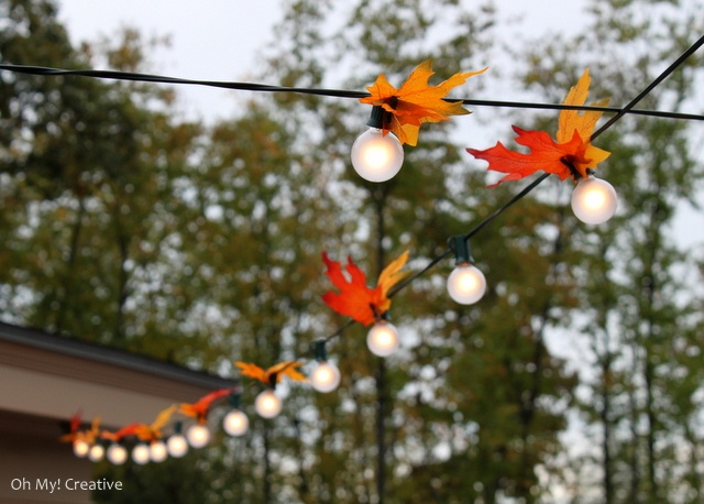 add fall leaves to lights and your venue will get a more fall like look