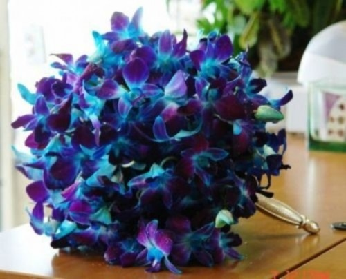 a purple orchid wedding bouquet with peacock feathers is a bright idea with a colorful statement