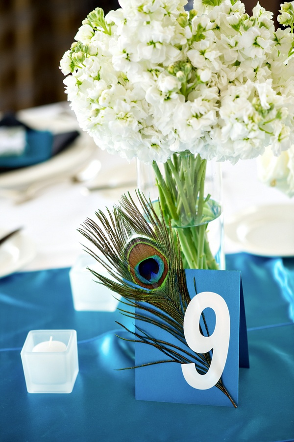 a wedding table number   a blue card with a peacock feather for an accent and better visibility