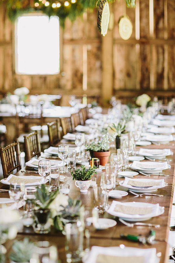 a simple and neutral barn wedding tablescape with a table runner of potted greenery and succulents, neutral linens and menus