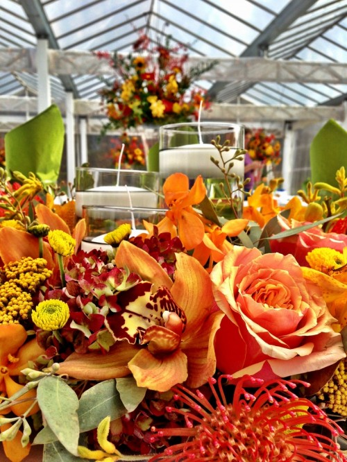 a bright and colorful fall flower centerpiece with a couple of floating candles is very bold and statement-like