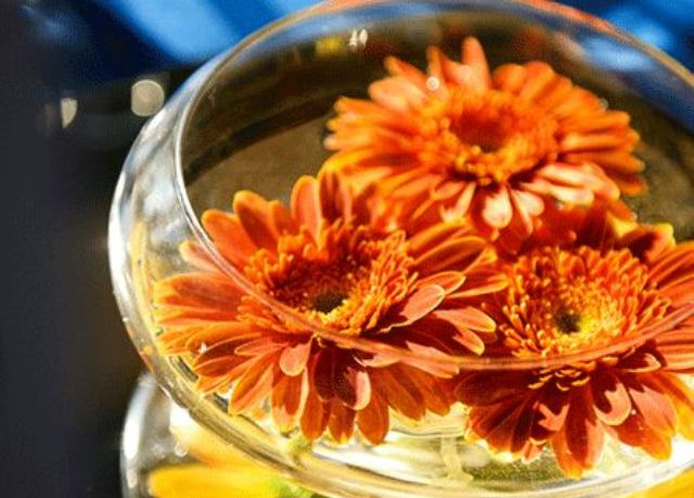 a glass bowl with bright floating blooms is a simple and chic fall wedding centerpiece