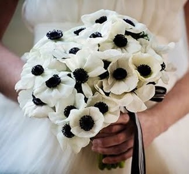 a white anemone wedding bouquet with black and white ribbons is a cool idea for a monochromatic wedding