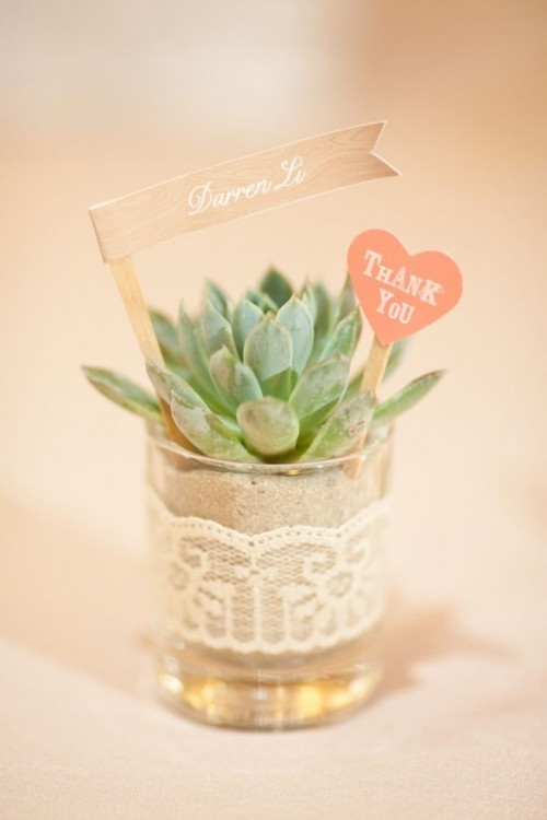 a cute potted succulent with tags wrapped in lace is a cool and simple wedding favor