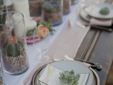 cacti and succulents in glasses and succulents on each place to mark place settings is very lovely