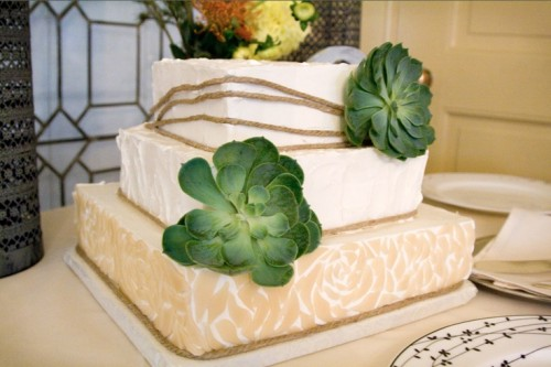 a square wedding cake with several tiers accented with a couple of succulents is a stylish modern idea