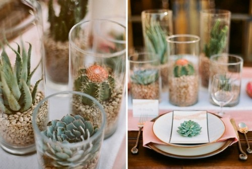 a cluster wedding centerpiece of cactus and succulents in glasses and a succulent to mark the place setting