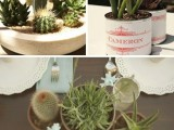 cluster wedding centerpieces of cacti and succulents in pots of various kinds are eco- and budget-friendly ideas for every wedding