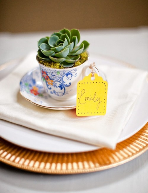 a blue vintage teacup with a succulent as a place setting decoration and wedding favor at the same time