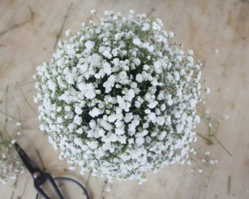 Charming Diy Babys Breath Globe