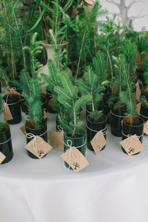 offer mini Christmas trees in cans as your winter bridal shower favors and they will be super cute