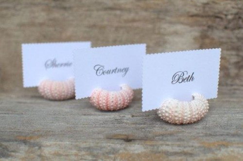 sea urchins used to hold wedding escort cards are ideal for a beach wedding, make them yourself