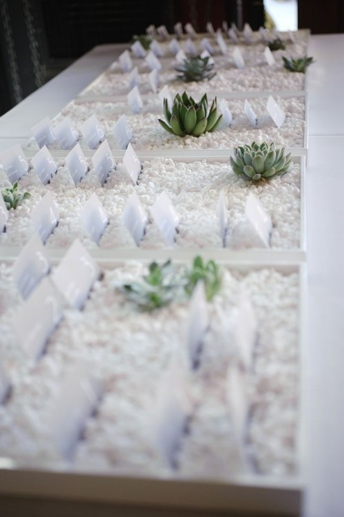 trays with white pebbles, paper cards and some succulents will fit not only a beach wedding but also many others