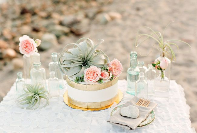 a coastal sweets table with airplants, peachy blooms and a cake decorated with an air plant and peachy blooms is amazing