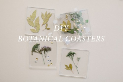 Diy Botanical Coasters For Decor Or As Favors