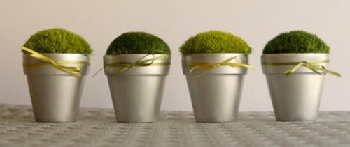 DIY Little Pots Of Moss As Summer Wedding Favors