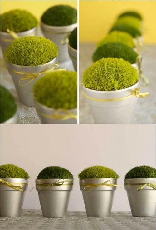 Summer Wedding Favor Ideas Diy : DIY Little Pots Of Moss As Summer Wedding Favors Weddingomania