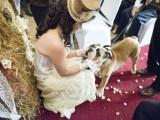 diy-low-cost-south-african-steampunk-wedding-2