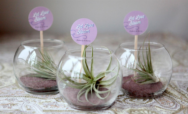 DIY Mini Terrariums As Guest FavorsWeddingomania