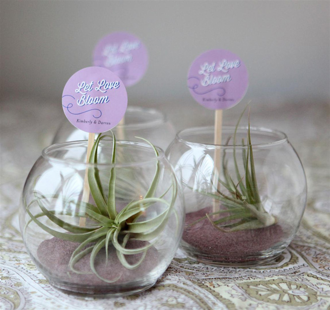 Diy Mini Terrariums As Guest Favors