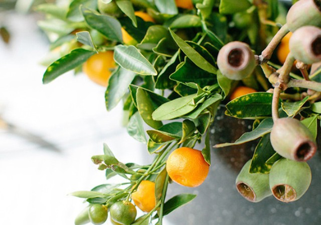 Picture Of diy orange and olive wreath for holiday weddings  3