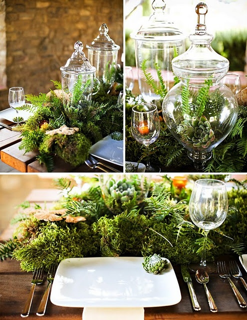 a lush woodland table runner made of greenery, succulents, mushrooms and jars with succulents and air plants